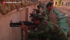 Video «Deutschland rüstet Kurden im Irak auf» abspielen