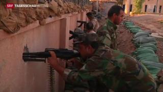 Video « Deutschland rüstet Kurden im Irak auf » abspielen