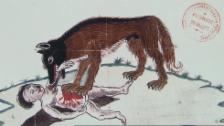 Link öffnet eine Lightbox. Video Wolf: Woher kommt die Angst vor Wölfen? (3/3) abspielen