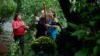 Video «Swiss Wind Trio mit «Schwyzer Juiz»» abspielen