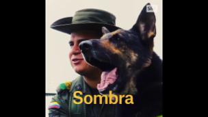 Video «Sombra: Der Albtraum der kolumbianischen Drogenbosse» abspielen
