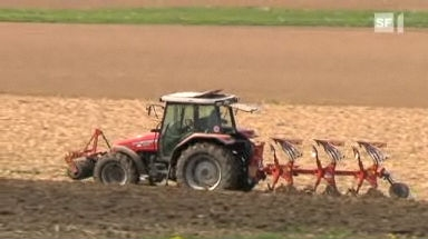 Video «Sture Bauern: Sie produzieren unnötig teuer» abspielen