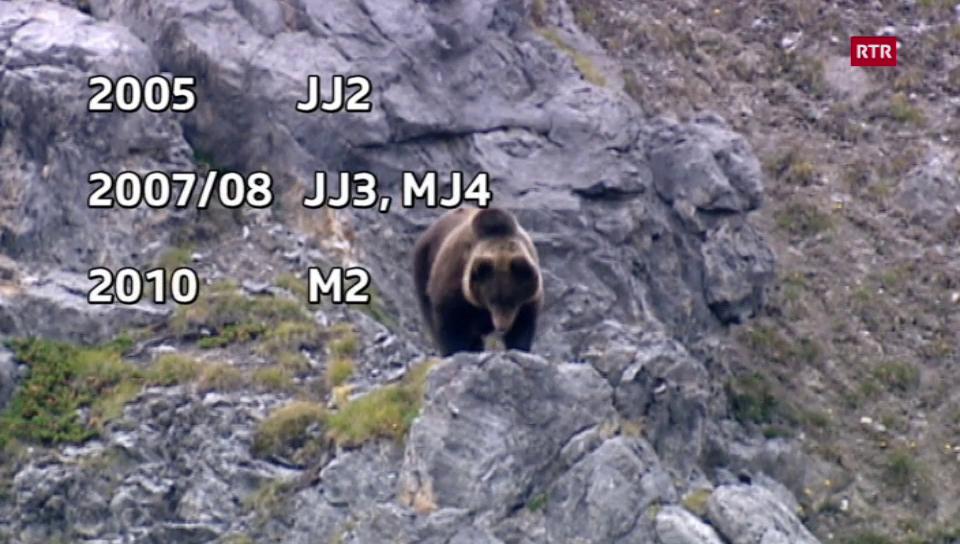 Cronica da l'urs