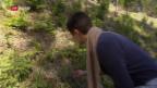 Video «Nachhaltigkeit zum Reinbeissen» abspielen