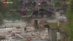 Video «Weniger Überschwemmungen in den Alpen» abspielen