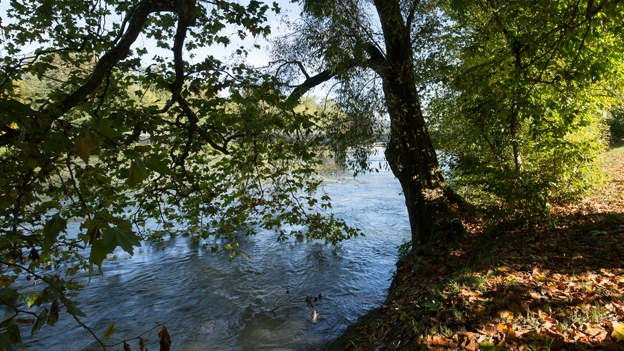 Othmarsingen – Aarau