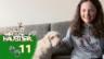 Video «Laras Hündin mag Fleisch mit Haferflocken» abspielen
