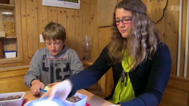 Video «Jugend testet 2013: Der Schokoladen-Test» abspielen