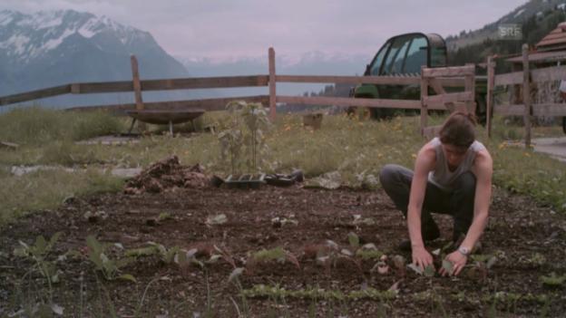 Video «Margrits Alpenküche: Gemüsesuppe» abspielen