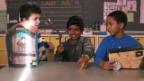 Video «Die kleinen Experten (2)» abspielen