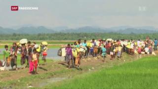 Video «UNO ruft zum Ende der Gewalt auf» abspielen