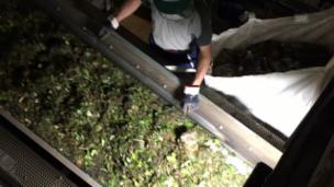 Video «Kompost-Sortierung» abspielen