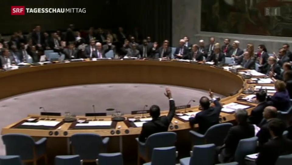 Uno-Resolution gegen IS angenommen
