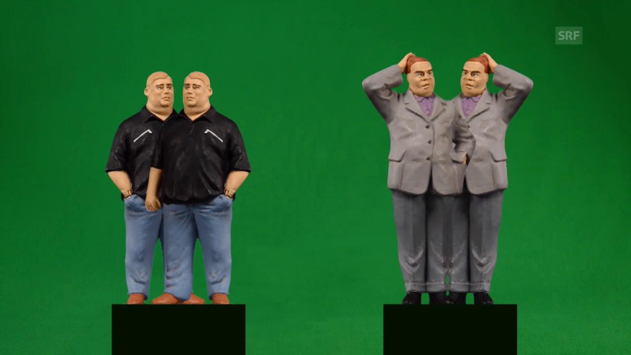 Wie Zwillingsbrüder dick werden (SRF)