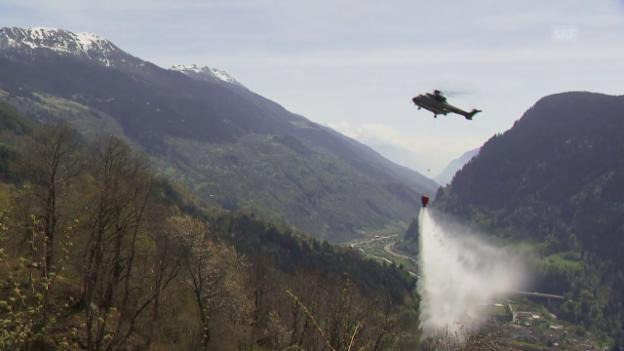 Video «Waldbrand bei Faido» abspielen
