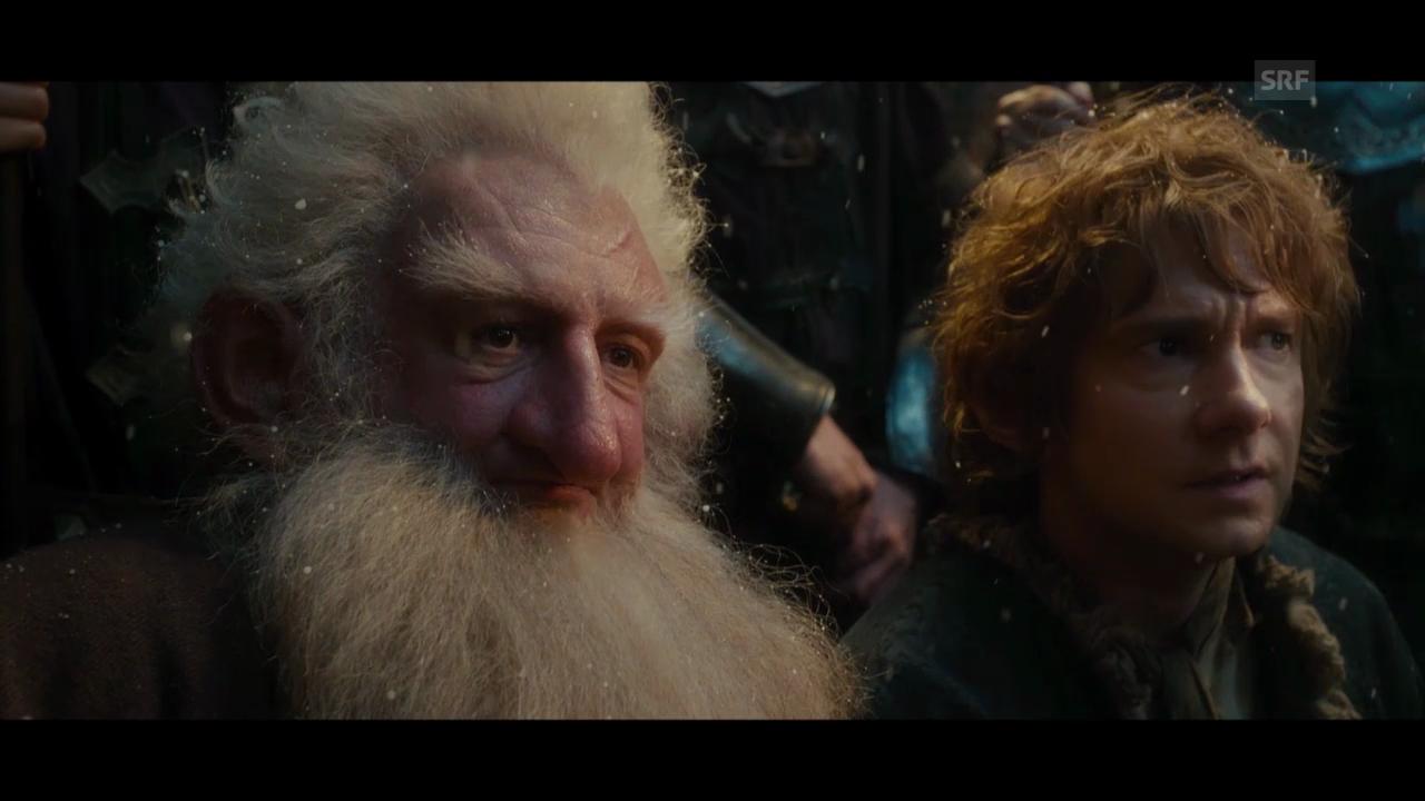 Videokritik zu «The Hobbit: The Desolation of Smaug»