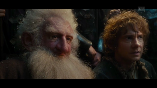 Video «Videokritik zu «The Hobbit: The Desolation of Smaug»» abspielen