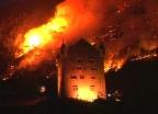 Video «Die Natur ist stärker als das Feuer» abspielen