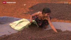 Video «Kampf gegen Spekulation mit Grundnahrungsmitteln» abspielen