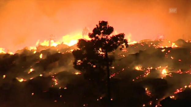 Video «Neue Waldbrände in Portugal» abspielen