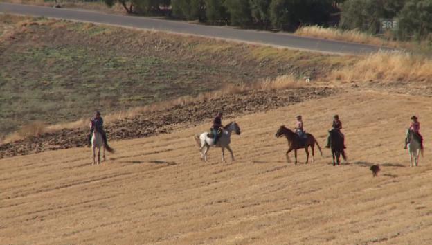 Video «Auf dem Rücken der Pferde...» abspielen
