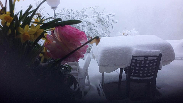Lea Fürer macht Schluss mit dem Winter