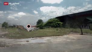 Video «Quarx: Marshmallows und Schwarze Löcher (3/26)» abspielen
