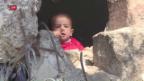Video «Waffenstillstand in Syrien hat begonnen» abspielen