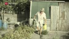 Laschar ir video «+ 3°: Dapli malsognas en Grischun cun la midada da clima»