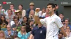 Video «Tennis: Djokovic-Haas» abspielen