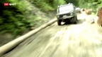 Video «Automobil: Offroader-Rennen «Superkarpata»» abspielen