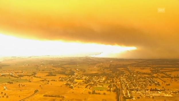 Video «Waldbrände wüten im Bundesstaat Victoria (unkommentiert)» abspielen