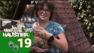 Video «Saphira mit ihren Hühnern» abspielen