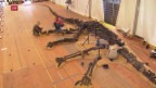Video «Gigantisches Dinosaurier-Skelett im Naturhistorischen Museum Genf» abspielen