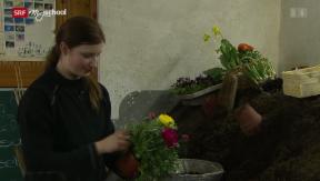 Video «Berufsbild: Gärtnerin EFZ » abspielen