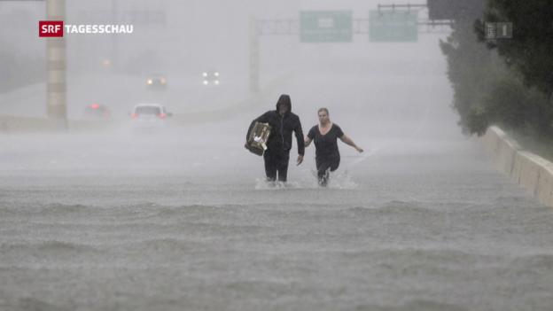 Video «Stärkere, aber nicht mehr Hurrikane» abspielen