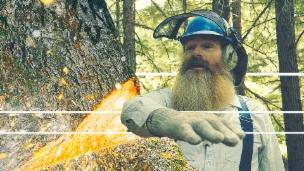 Video «Hermann über das korrekte Baumfällen» abspielen