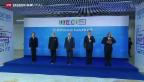 Video «Treffen der BRICS-Staaten» abspielen