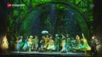 Video «Musical «Wicked» gastiert in Zürich» abspielen