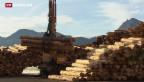 Video «Der Schweizer Wald bleibt ein Verlustgeschäft» abspielen
