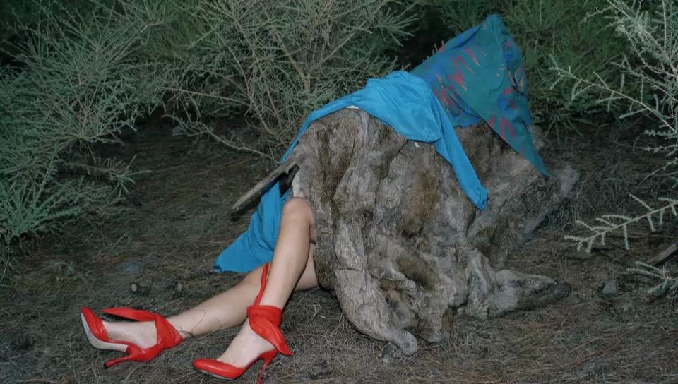 Viviane Sassen – Modefotografie mit hintergründiger Erotik