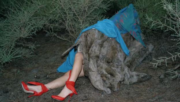 Video «Viviane Sassen – Modefotografie mit hintergründiger Erotik» abspielen