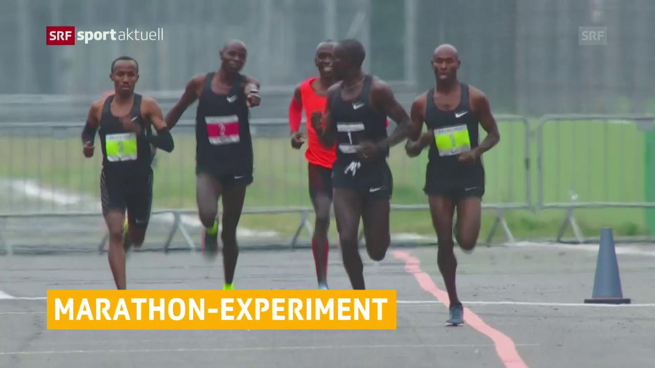 Marathon-Rekordversuch nicht erfolgreich