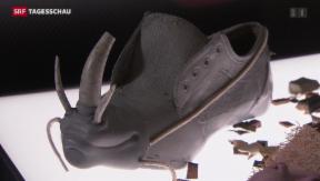 Video «3000 Jahre Schuhgeschichte» abspielen