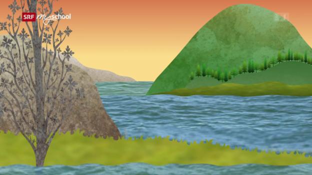 Video «Helveticus 2: Der Monte San Giorgio (1/26)» abspielen