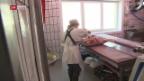 Video «Die erste Fleischfachfrau aus dem Kanton Uri» abspielen