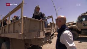 Video «FOKUS: Mossul – eine vom Krieg geprägte Stadt» abspielen