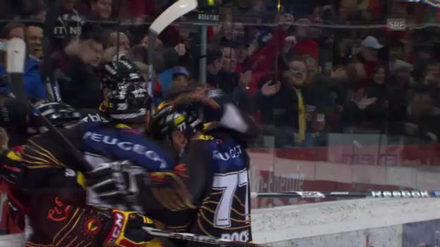 Video «SC Bern - Fribourg-Gottéron («sportaktuell»)» abspielen