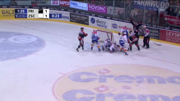 Video «Fribourgs umstrittenes 2:1» abspielen