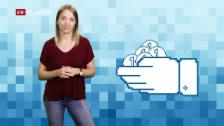 Video «World Wide Wir: Was passiert mit meinen Daten? (3/3)» abspielen